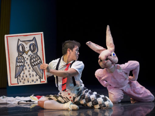 The Velveteen Rabbit – Local Dancer Auditions